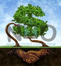 Finanční růst